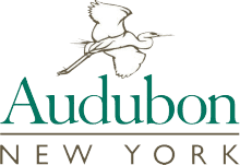 New York Audubon Society